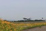 musashiさんが、高松空港で撮影した全日空 A321-200の航空フォト(写真)