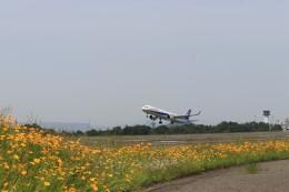 musashiさんが、高松空港で撮影した全日空 A321-272Nの航空フォト(写真)