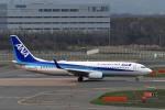 Dojalanaさんが、新千歳空港で撮影した全日空 737-881の航空フォト(写真)