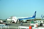 TulipTristar 777さんが、成田国際空港で撮影した全日空 737-881の航空フォト(写真)