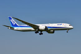 saoya_saodakeさんが、成田国際空港で撮影した全日空 787-9の航空フォト(写真)