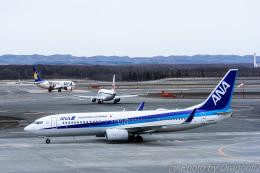 dragonflyさんが、新千歳空港で撮影した全日空 737-881の航空フォト(飛行機 写真・画像)