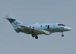 じーく。さんが、米子空港で撮影した航空自衛隊 U-125A (BAe-125-800SM)の航空フォト(飛行機 写真・画像)