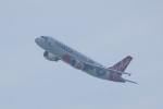 かずまっくすさんが、ランカウイ国際空港で撮影したエアアジア A320-216の航空フォト(写真)