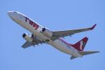 yabyanさんが、関西国際空港で撮影したティーウェイ航空 737-8Q8の航空フォト(写真)