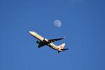 ひこ☆さんが、新千歳空港で撮影した日本航空 737-846の航空フォト(写真)