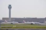 hirokongさんが、羽田空港で撮影した日本航空 777-346の航空フォト(写真)