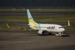 知希(仮)さんが、羽田空港で撮影したAIR DO 737-781の航空フォト(写真)
