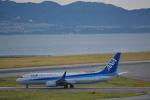 toyoquitoさんが、関西国際空港で撮影した全日空 737-881の航空フォト(写真)