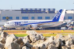 KIMISTONERさんが、台湾桃園国際空港で撮影した全日空 787-8 Dreamlinerの航空フォト(飛行機 写真・画像)