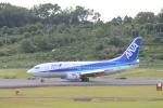 Rsaさんが、熊本空港で撮影したANAウイングス 737-54Kの航空フォト(写真)