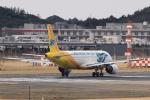 多楽さんが、成田国際空港で撮影したセブパシフィック航空 A320-214の航空フォト(写真)