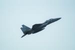 FRTさんが、米子空港で撮影した航空自衛隊 F-15DJ Eagleの航空フォト(飛行機 写真・画像)