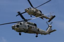 EXIA01さんが、長崎空港で撮影した海上自衛隊 SH-60Kの航空フォト(飛行機 写真・画像)