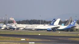 誘喜さんが、アタテュルク国際空港で撮影したボスポラス・ヨーロピアン・エアウェイズ A300B4-120の航空フォト(写真)