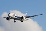panchiさんが、那覇空港で撮影した全日空 787-8 Dreamlinerの航空フォト(写真)