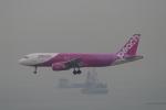 トオルさんが、香港国際空港で撮影したピーチ A320-214の航空フォト(写真)