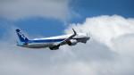 Ocean-Lightさんが、羽田空港で撮影した全日空 A321-272Nの航空フォト(写真)