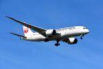 まいけるさんが、スワンナプーム国際空港で撮影した日本航空 787-8 Dreamlinerの航空フォト(写真)