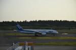 やす!さんが、成田国際空港で撮影した全日空 787-8 Dreamlinerの航空フォト(写真)