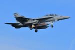 はるかのパパさんが、岩国空港で撮影したアメリカ海軍 EA-18G Growlerの航空フォト(写真)