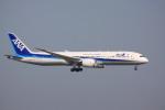 けいとパパさんが、羽田空港で撮影した全日空 787-9の航空フォト(写真)