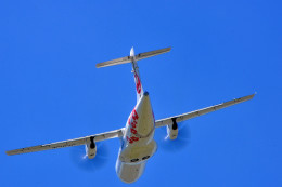 NALUさんが、伊丹空港で撮影した日本エアコミューター ATR-42-600の航空フォト(飛行機 写真・画像)