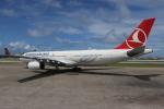 NIKEさんが、マレ・フルレ国際空港で撮影したターキッシュ・エアラインズ A330-343Xの航空フォト(写真)