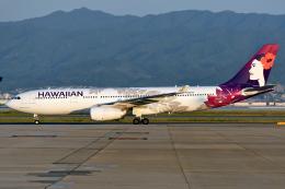 sachiさんが、関西国際空港で撮影したハワイアン航空 A330-243の航空フォト(写真)