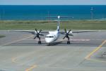 J-birdさんが、稚内空港で撮影したANAウイングス DHC-8-402Q Dash 8の航空フォト(飛行機 写真・画像)