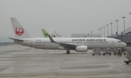 Lovely-Akiさんが、関西国際空港で撮影した日本航空 737-846の航空フォト(飛行機 写真・画像)