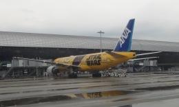 Lovely-Akiさんが、関西国際空港で撮影した全日空 777-281/ERの航空フォト(飛行機 写真・画像)