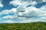 zephyrさんが、旭川空港で撮影した全日空 737-781の航空フォト(写真)