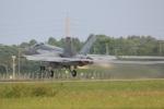 DONKEYさんが、新田原基地で撮影したアメリカ海軍 F/A-18E Super Hornetの航空フォト(飛行機 写真・画像)