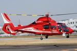 へりさんが、八尾空港で撮影した大阪市消防航空隊 AS365N3 Dauphin 2の航空フォト(写真)