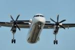 とおまわりさんが、伊丹空港で撮影したANAウイングス DHC-8-402Q Dash 8の航空フォト(写真)