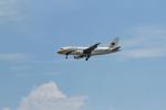 garrettさんが、シンガポール・チャンギ国際空港で撮影したミャンマー国際航空 A319-111の航空フォト(写真)