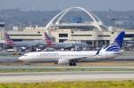 xiel0525さんが、ロサンゼルス国際空港で撮影したコパ航空 737-8V3の航空フォト(写真)