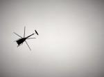 kij niigataさんが、新発田駐屯地 - JGSDF Camp Shibataで撮影した陸上自衛隊 OH-6Dの航空フォト(飛行機 写真・画像)