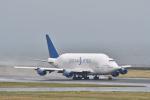 Nikon787さんが、中部国際空港で撮影したボーイング 747-409(LCF) Dreamlifterの航空フォト(写真)