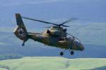 ちゃぽんさんが、東富士演習場で撮影した陸上自衛隊 OH-1の航空フォト(写真)
