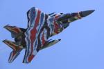 たままさんが、小松空港で撮影した航空自衛隊 F-15DJ Eagleの航空フォト(写真)