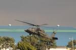 とらとらさんが、木更津飛行場で撮影したアメリカ陸軍 UH-60L Black Hawk (S-70A)の航空フォト(写真)