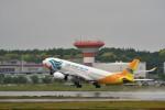 T.Sazenさんが、成田国際空港で撮影したセブパシフィック航空 A330-343Xの航空フォト(写真)