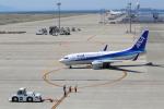 VEZEL 1500Xさんが、中部国際空港で撮影した全日空 737-781の航空フォト(写真)