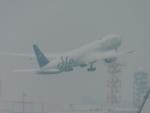 zyakuspさんが、羽田空港で撮影したガルーダ・インドネシア航空 777-3U3/ERの航空フォト(写真)