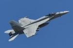 パラノイアさんが、厚木飛行場で撮影したアメリカ海軍 F/A-18E Super Hornetの航空フォト(写真)