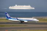 VEZEL 1500Xさんが、中部国際空港で撮影した全日空 737-881の航空フォト(写真)