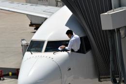 鈴鹿@風さんが、天津浜海国際空港で撮影した日本航空 737-846の航空フォト(写真)