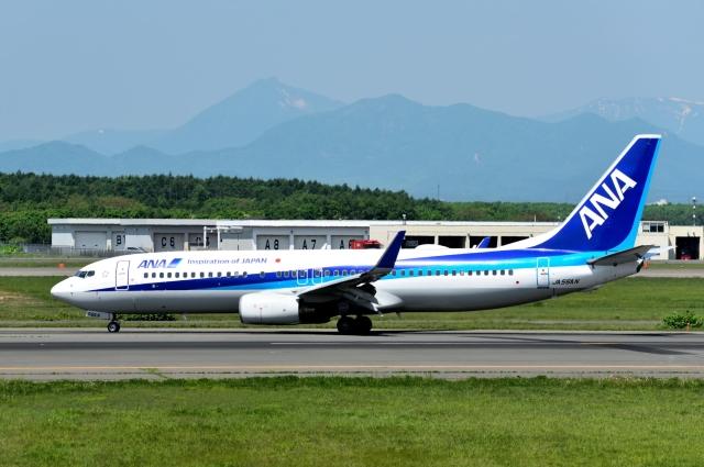 バーダーさんが、新千歳空港で撮影した全日空 737-881の航空フォト(飛行機 写真・画像)